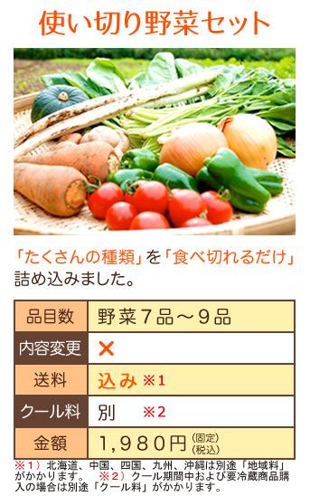無農薬ミレー野菜セット1