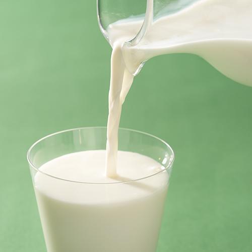那須のおいしい牛乳&ヨーグルト