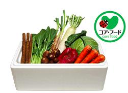 パルシステム 有機野菜セット