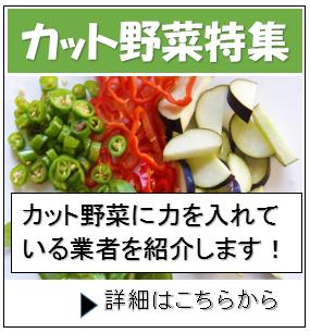 食材宅配サービス カット野菜