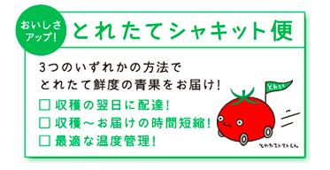 おうちコープ 新鮮野菜