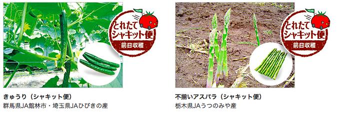 おうちコープ 鮮度の高い野菜